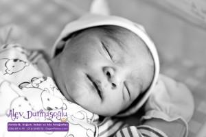 Kuzey Karabulut Doğum Fotoğrafları